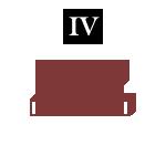 வாக்கியம் அமைத்தல் – IV